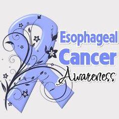 29 Best esophageal cancer images.