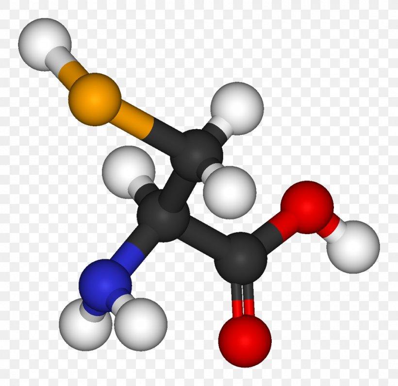 Essential Amino Acid Dicarboxylic Acid Diprotic Acid, PNG.