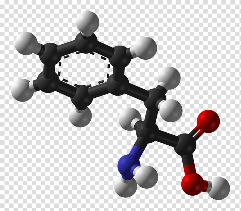 Phenylalanine Essential amino acid Levodopa Tyrosine, others.