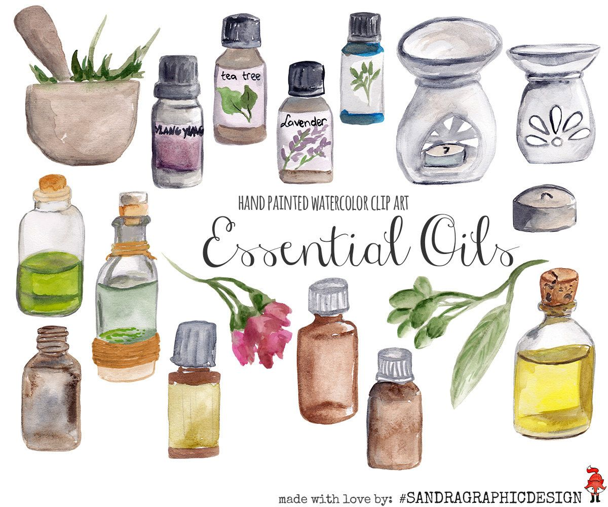 New to SandraGraphicDesign on Etsy: Essential oils clip art hand.