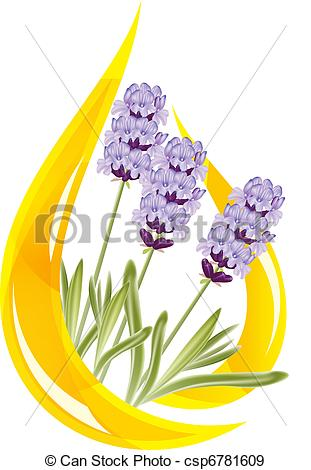 Essential oil clipart #13
