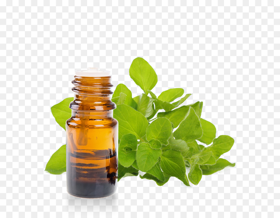 Herb Essential Oil Ore #206671.