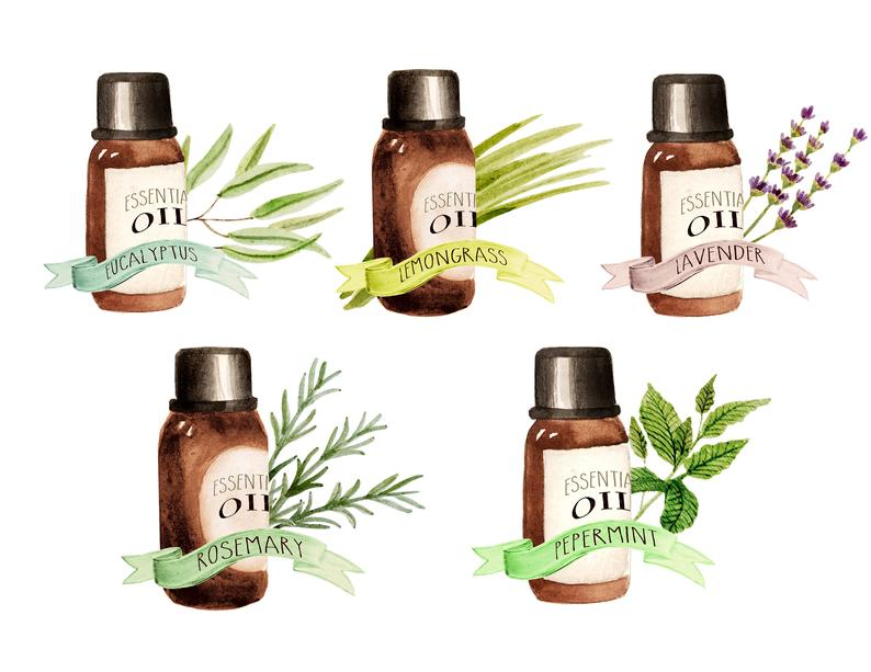 Essential oils clipart, herbs clipart, watercolor, botanicals clipart,  gardening clipart, organic, spa.