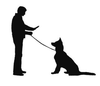 Obedince School Dogs Clipart.