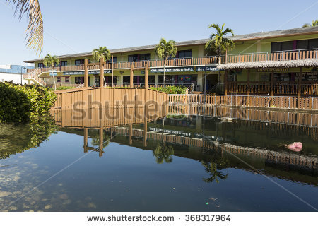 Florida Flooding Stock Photos, Royalty.
