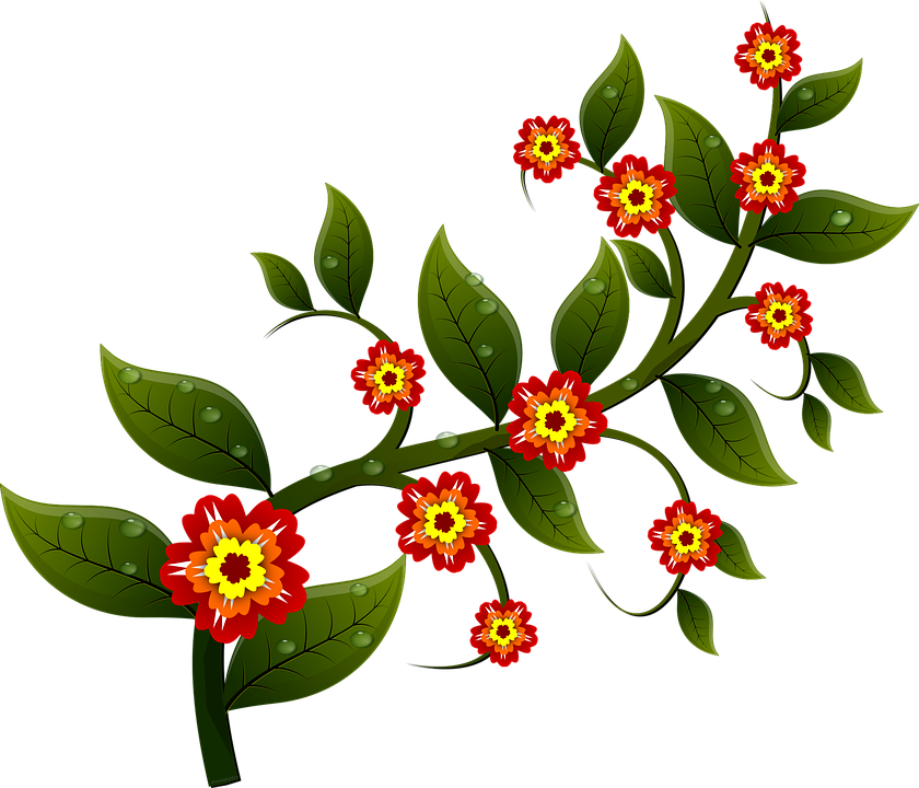 Free vector graphic: Flower, Branch, Nature, Leaves.