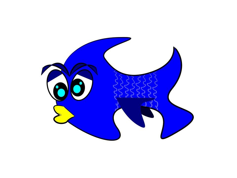 Free photo Fish Estuarine Minnow Terekhol River Puntius.