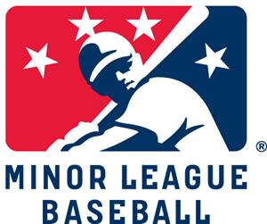 Esurance and Minor League Baseball Honor Fans with Home.