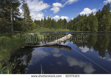 Gruer Stock Photos, Images, & Pictures.
