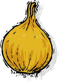 onion drawing by ananas, via ShutterStock.
