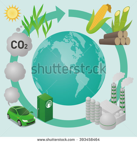 Biomass Stock Vectors, Images & Vector Art.