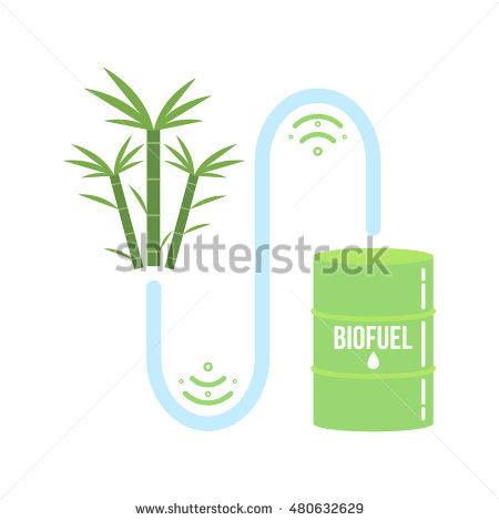 Biomass Stock Vectors, Images & Vector Art.