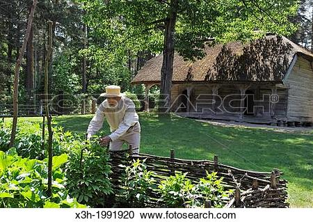 Stock Photography of old man gardening in front of a thatched.
