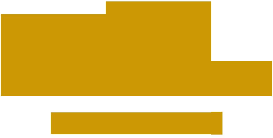 Etihad Airways PNG Transparent Etihad Airways.PNG Images..