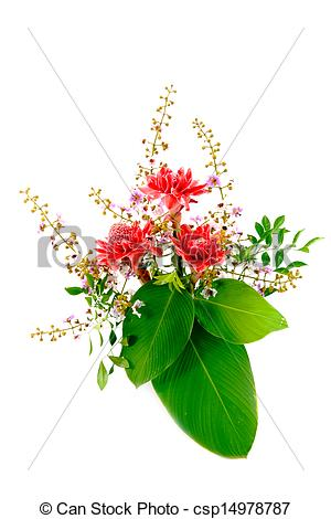 Pictures of Flower arrangements with pink torch ginger flowers.