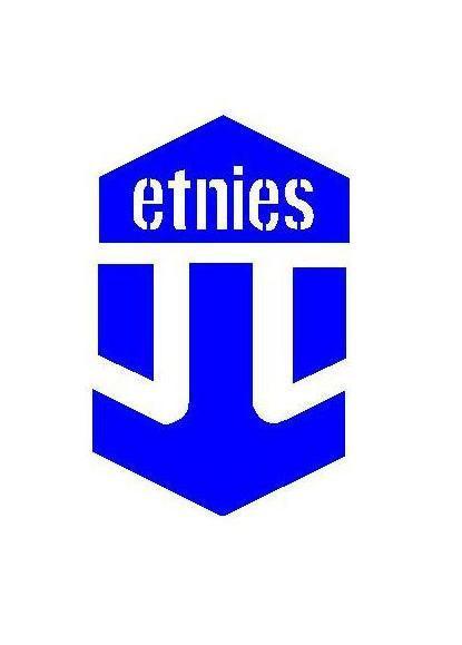 Etnies Logo.