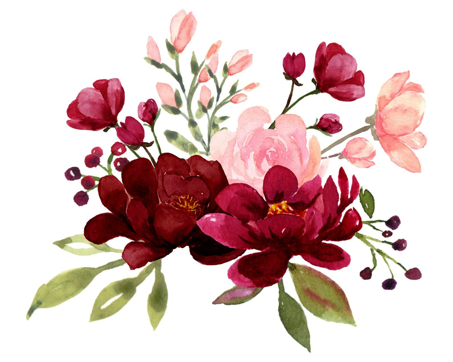 Blush and Burgundy Flowers Watercolor Clipart Collection.