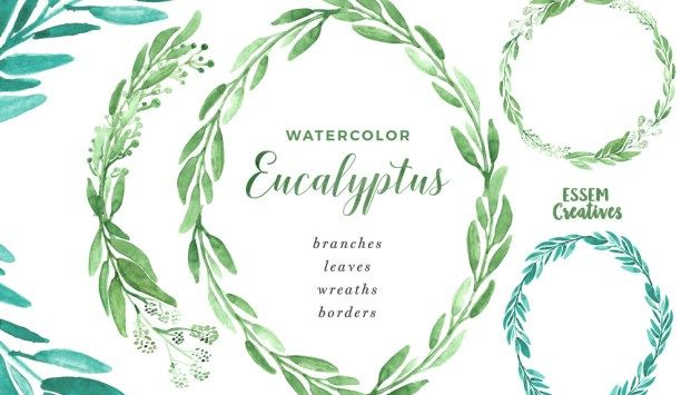 Watercolor Eucalyptus Clipart, Eucalyptus Branches Wreaths.