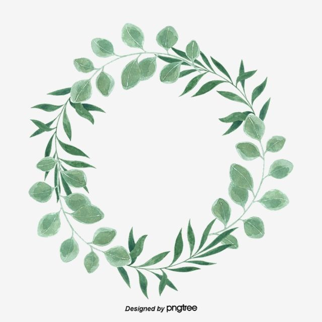 Green Little Refreshing Eucalyptus Leaf Circular Border.