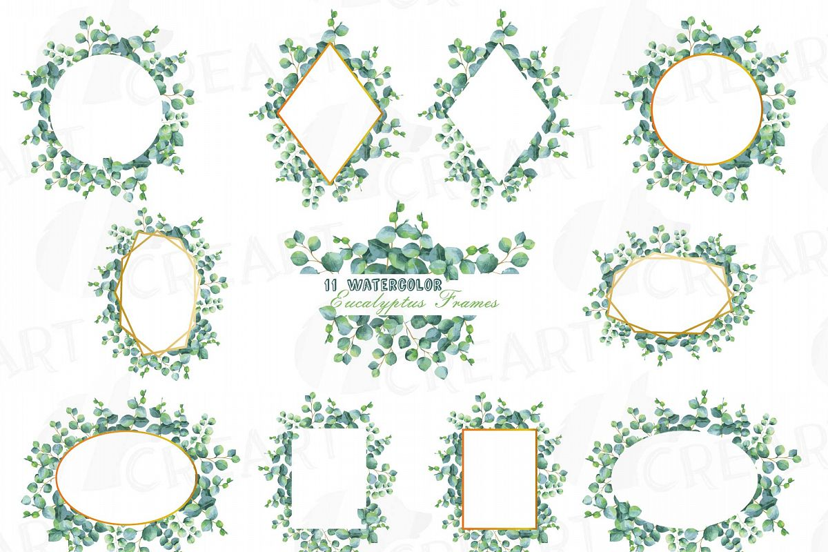 Eucalyptus frames watercolor clip art pack, Eucalyptus leaves design  borders. PNG, jpg, svg, vector illustrator & corel files included.