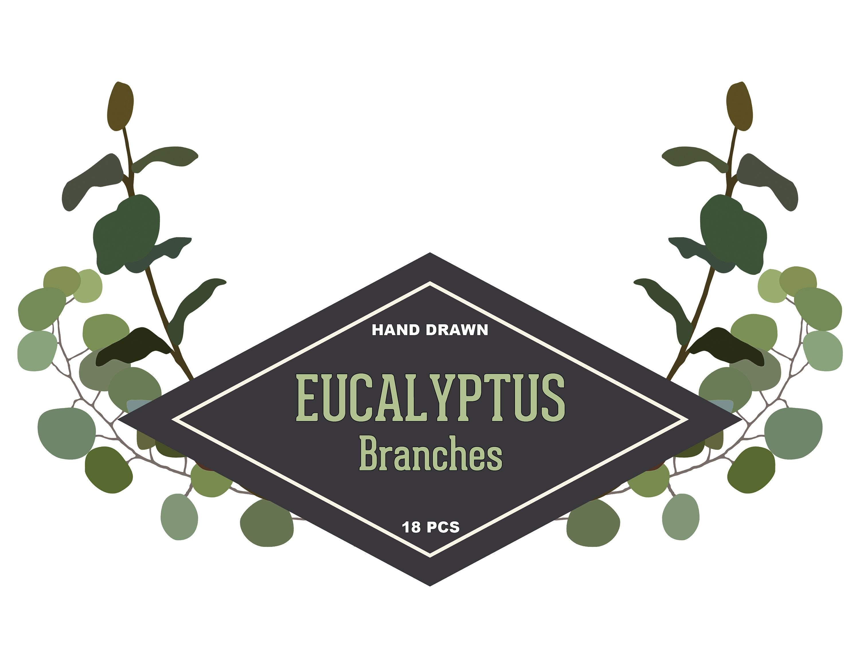 Eucalyptus Branch Clipart Set.