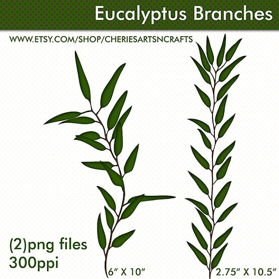 Eucalyptus Branches Clip Art PNG Foliage by CheriesArtsnCrafts.