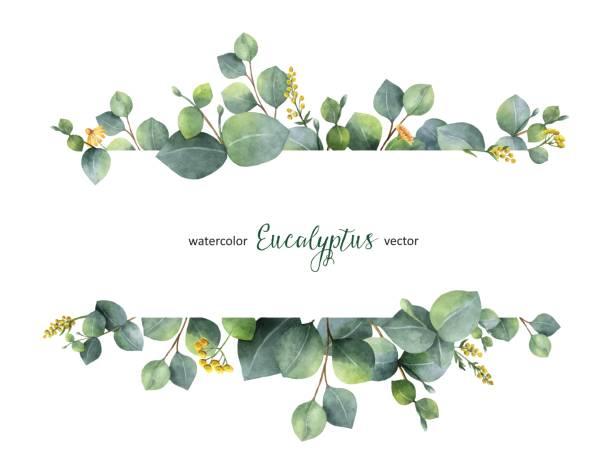 Eucalyptus free clipart 6 » Clipart Station.