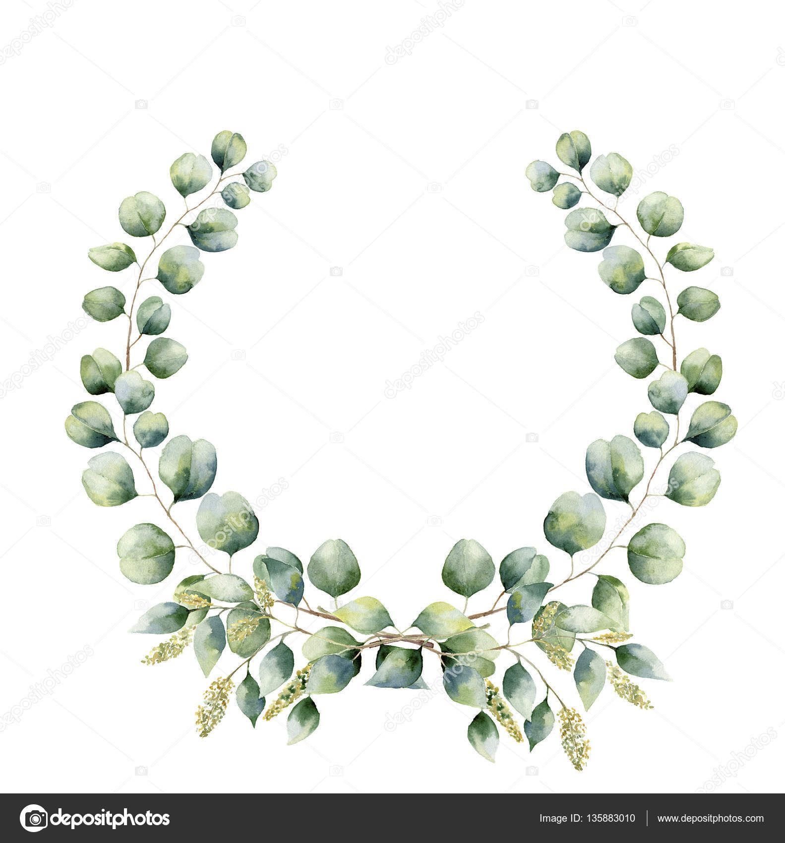Image result for watercolor eucalyptus wreath.