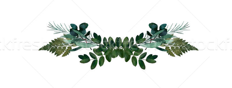 Watercolor modern decorative element. Eucalyptus round Green.