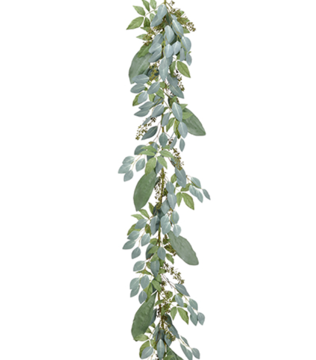 Eucalyptus Png (111+ images in Collection) Page 2.