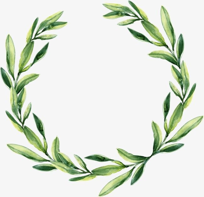 Green Leaf Garland, Watercolor Wreath, Watercolor PNG Transparent.