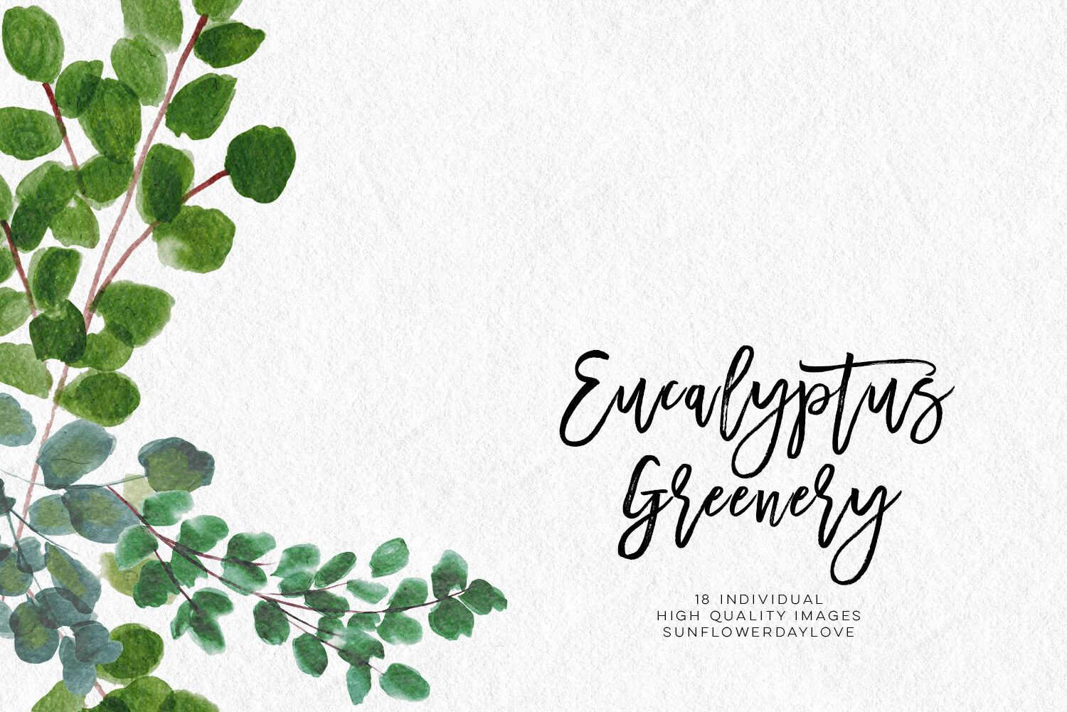 Greenery Leaf Watercolor clipart, Eucalyptus clipart By.