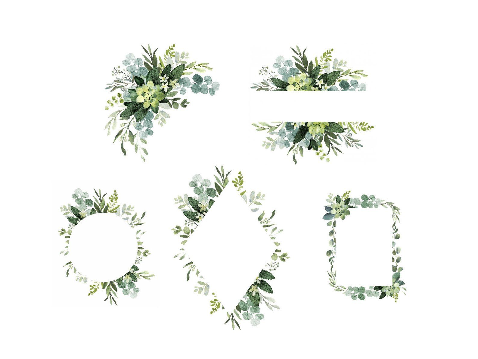 Foliage watercolor clipart with modern greenery, Eucalyptus.
