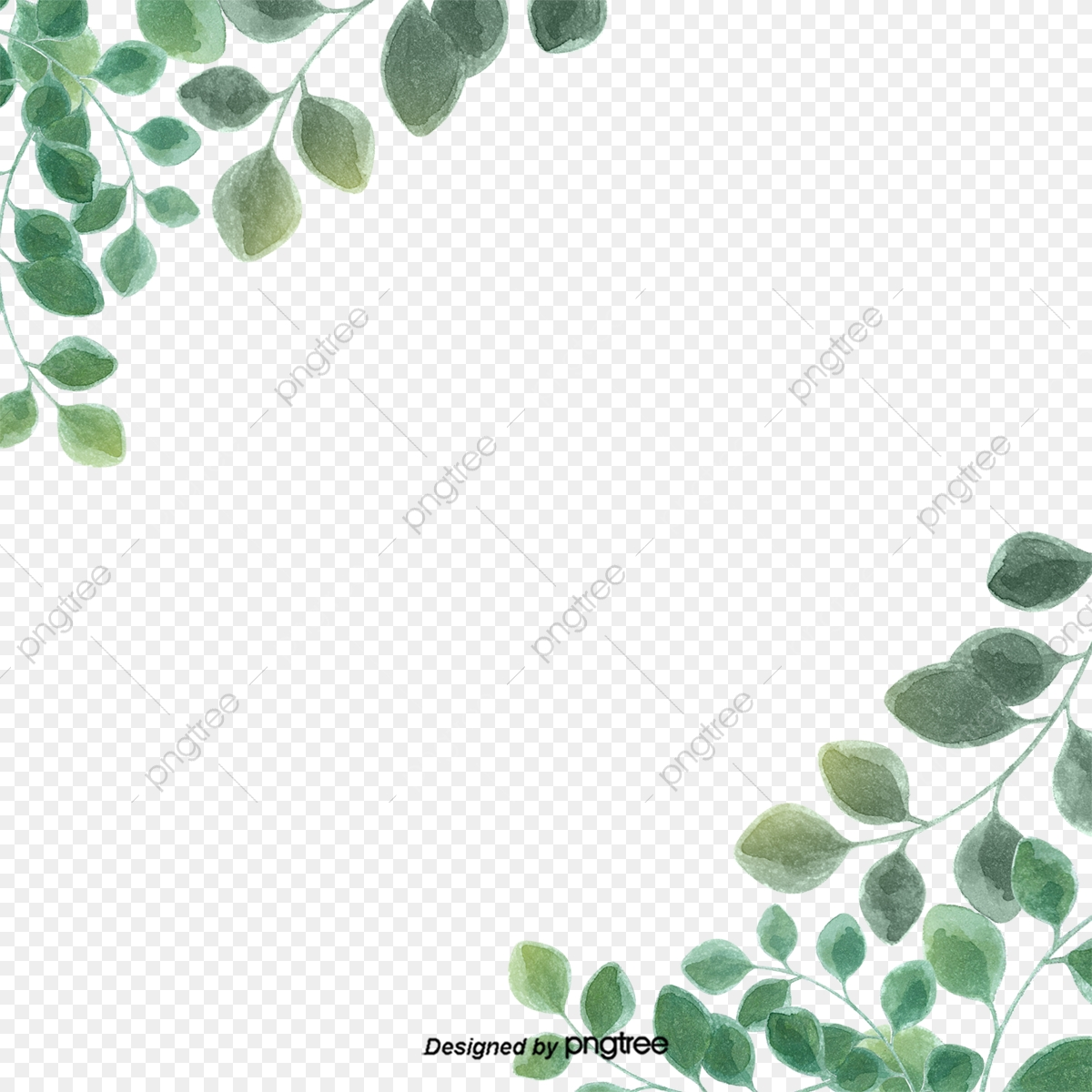 Green Simple Eucalyptus Leaf Border, Leaf, Eucalyptus, Eucalyptus.