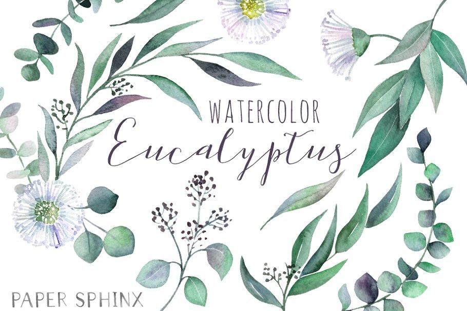 Watercolor Eucalyptus Leaf Pack.