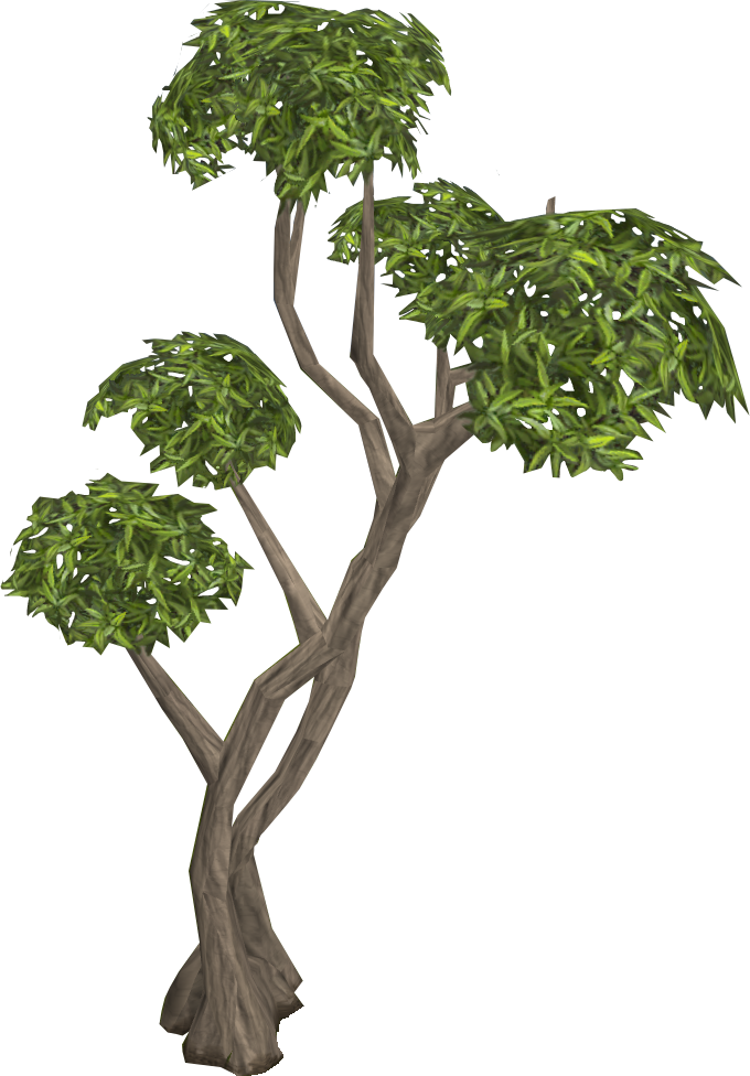 Eucalyptus Tree Clipart Library Download #192018.