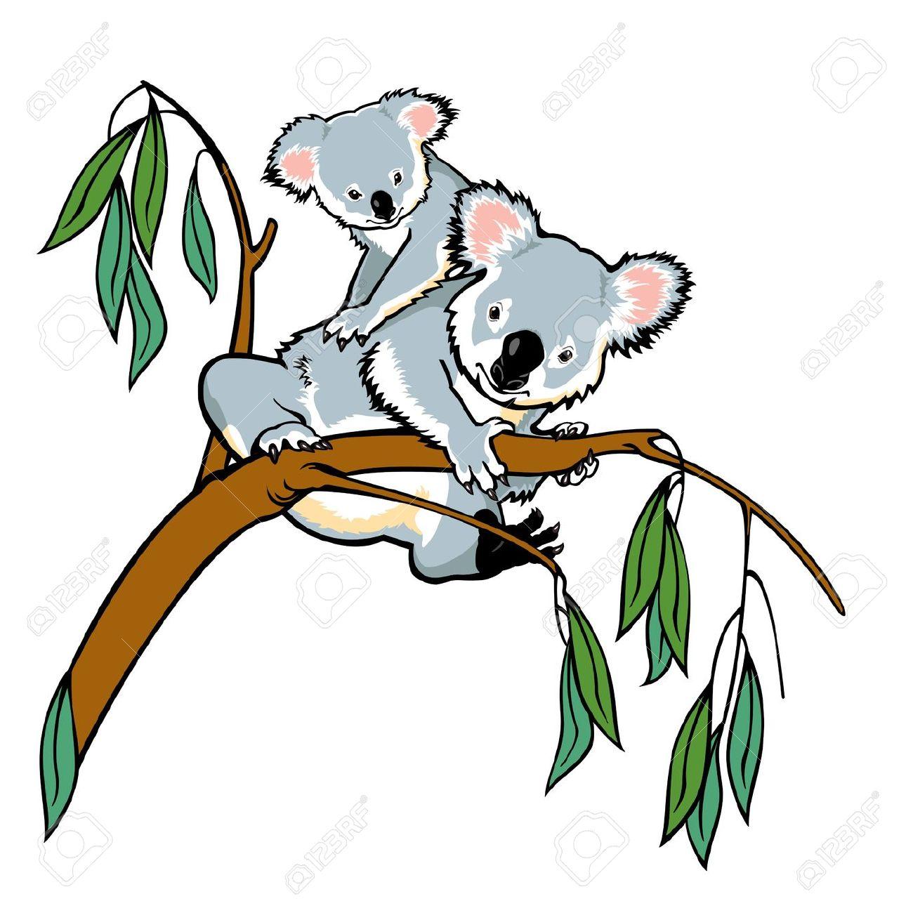 Eucalyptus tree drawing clipart.