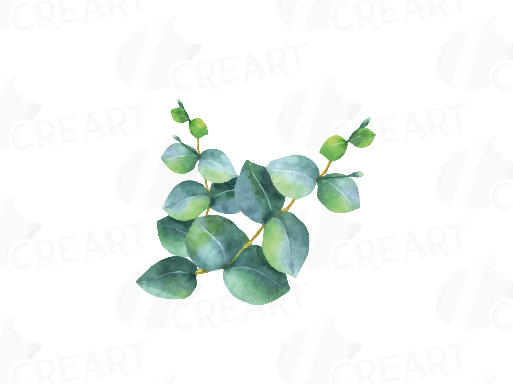 Download Free png Eucalyptus leaves and branches watercolor.