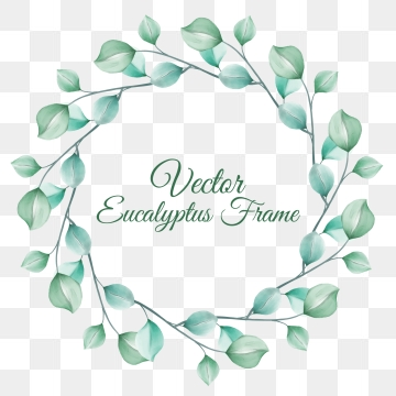 Eucalyptus Wreath Png, Vector, PSD, and Clipart With Transparent.