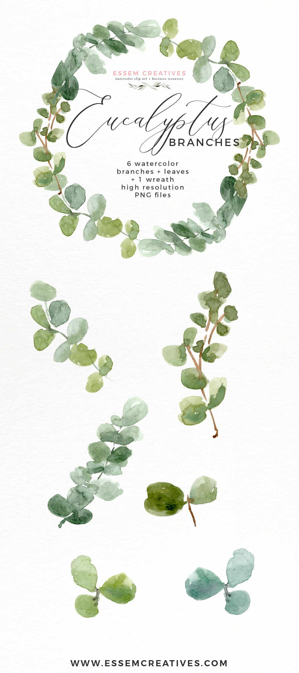 Watercolor Eucalyptus Wreath Branches Clipart PNG.