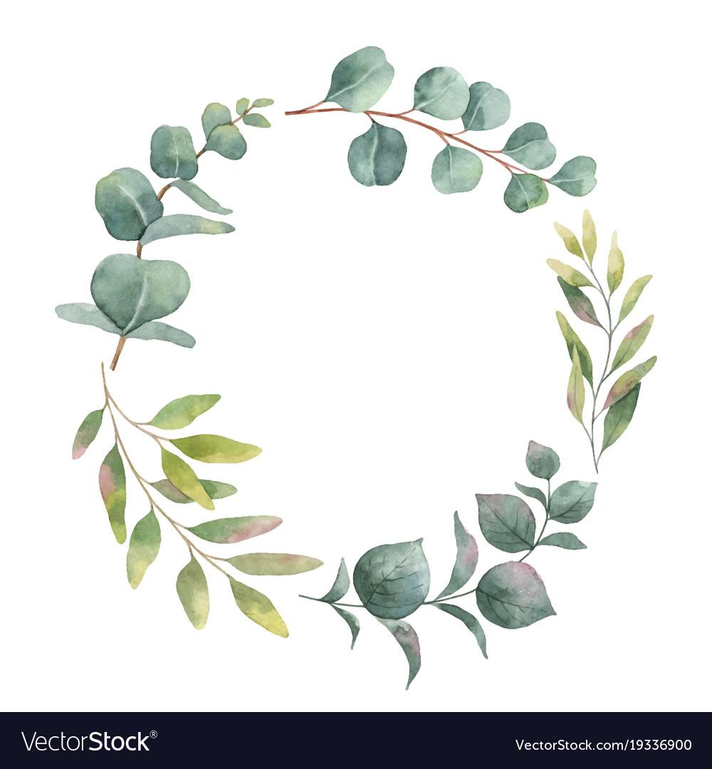 Watercolor wreath with green eucalyptus vector image.