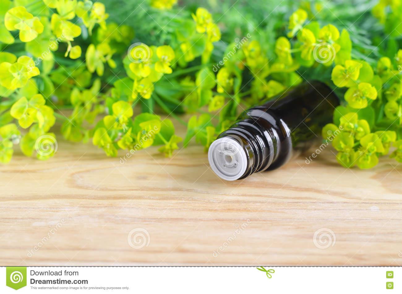 Bottle Of Euphorbia Cyparissias, Cypress Spurge Extract (Milkweed.