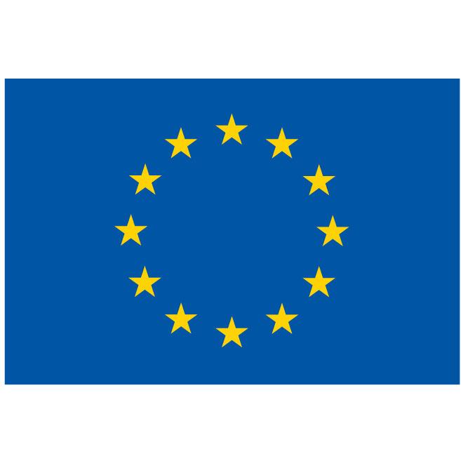 European Union vector flag.