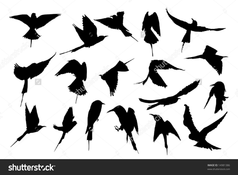 Swallow Bird Images Stock Photos amp Vectors  Shutterstock