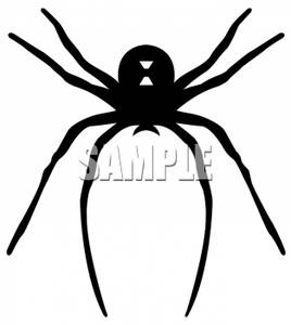Widow Spider.