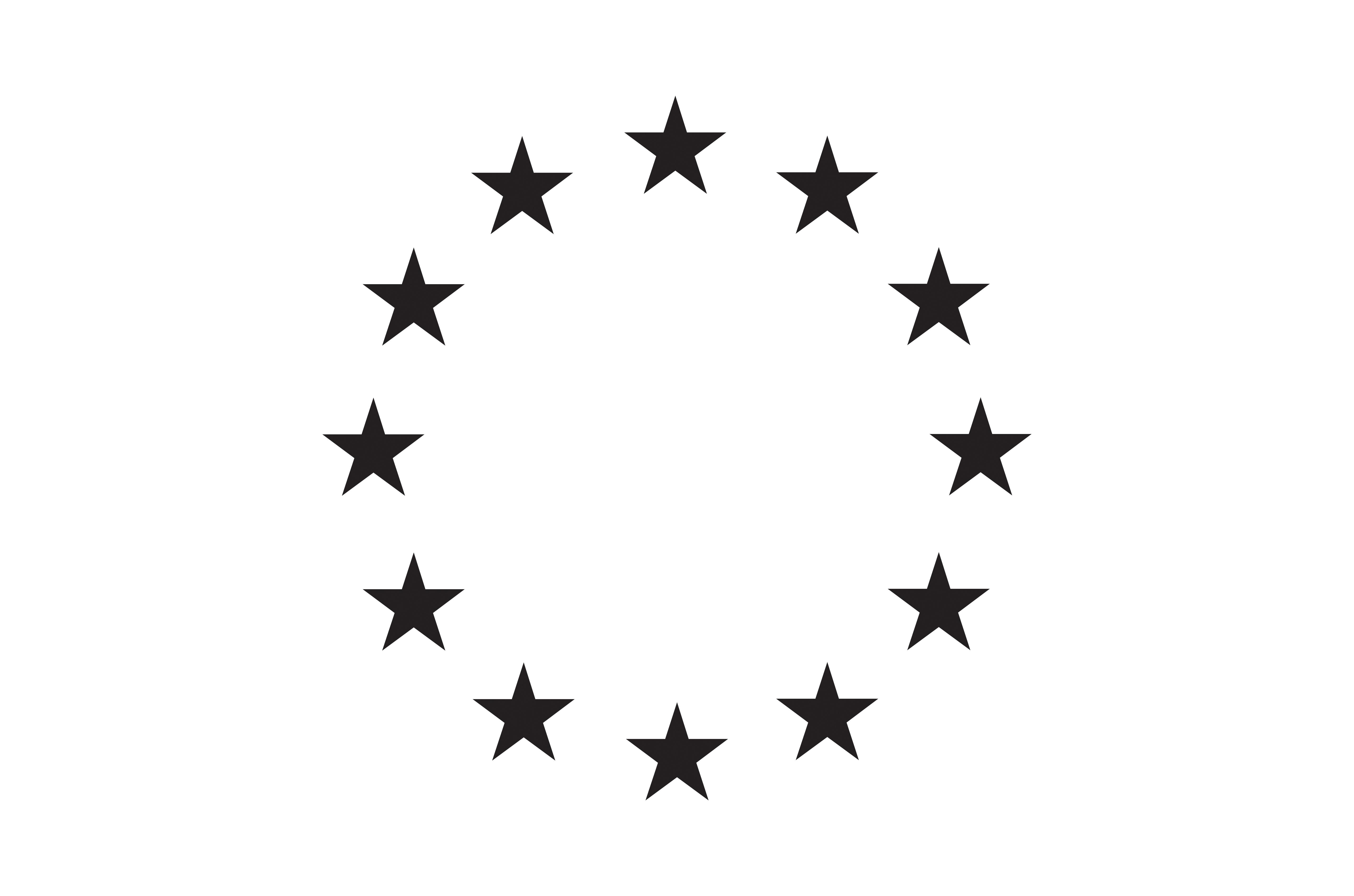 The European flag.