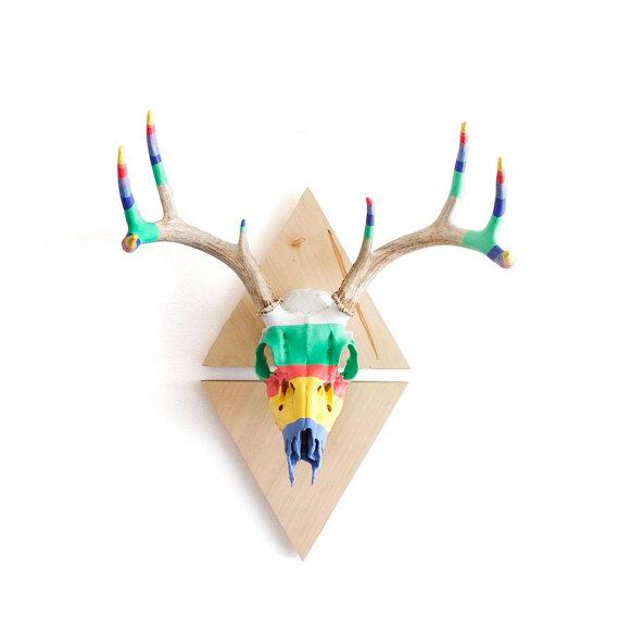European Mount Deer Skull Clip Art.