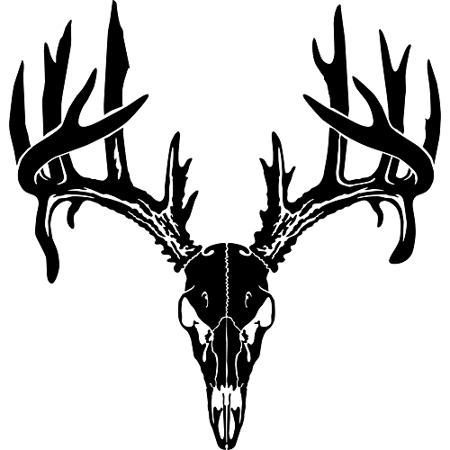 European deer clipart 20 free Cliparts | Download images ...