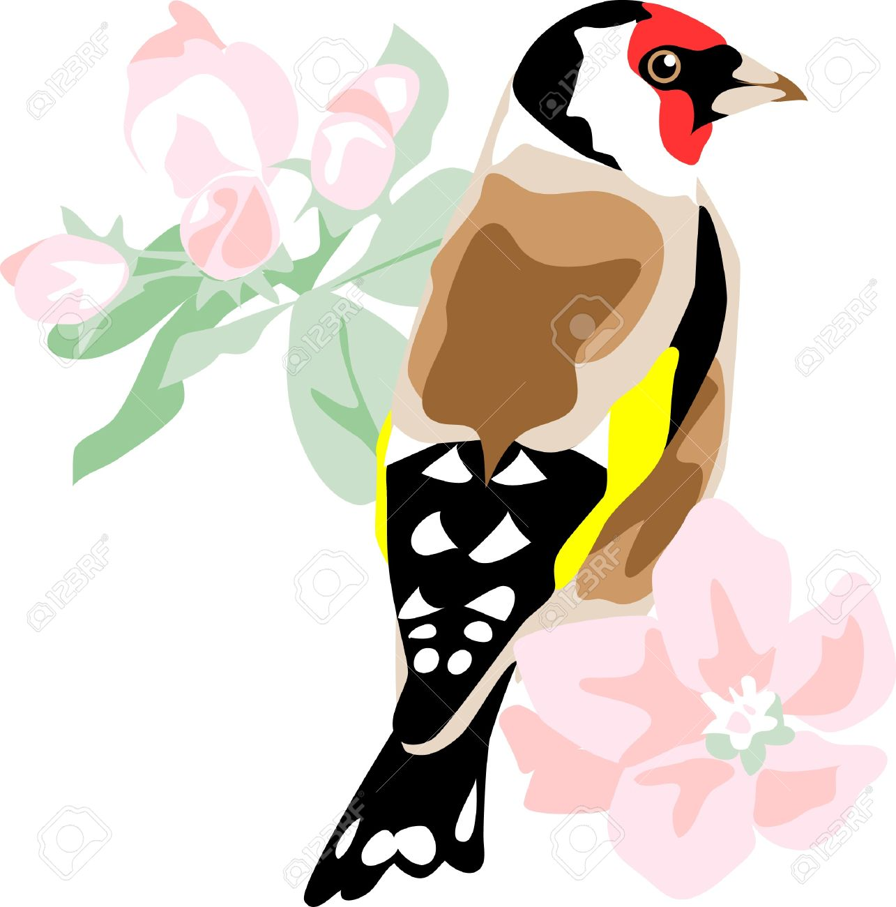 European Goldfinch With Apple Blossom Royalty Free Cliparts.