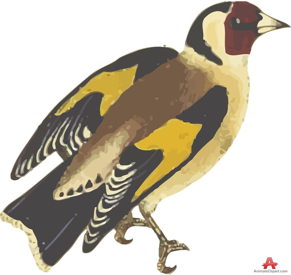 European Goldfinch Traced Vector Art.